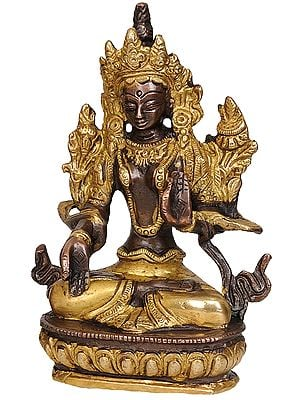 White Tara, The All-encompassing Tibetan Buddhist Deity