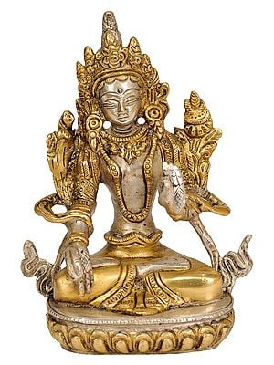 White Tara, The All-encompassing Tibetan Buddhist Deity