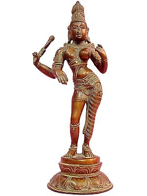 The Curvaceous Ardhanarishvara