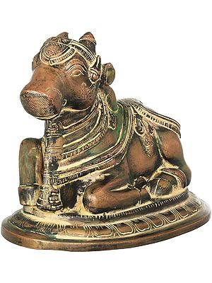 Nandi - The Mount of Shiva