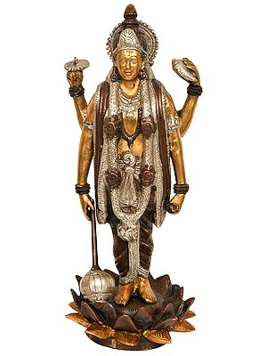 Vishnu, Sustainer Of Trloka