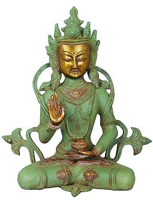 Crown Buddha (Tibetan Buddhist Deity)