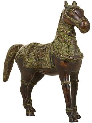 Stately Horse, Adorned Indian-style
