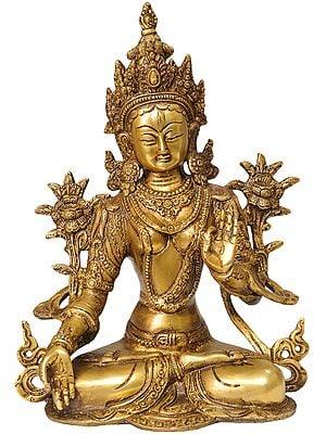 White Tara (Tibetan Buddhist Deity)