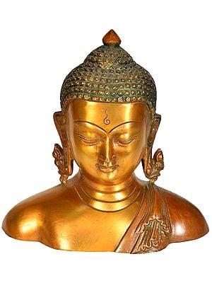 The Buddha Bust - Tibetan Buddhist