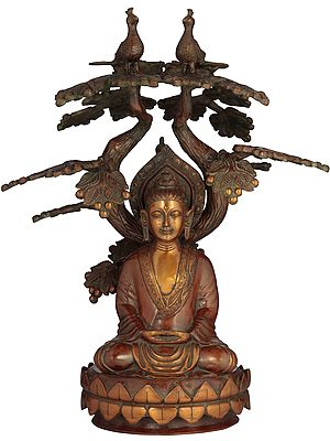 The Enlightened One, Seated Under The Symmetrically Sculpted Bodhi Tree
