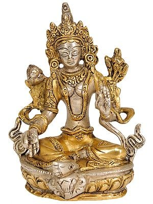 Green Tara, Her Captivating Beauty (Tibetan Buddhist Deity)