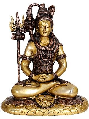 Mahayogi Shiva, Seated On Tigerskin