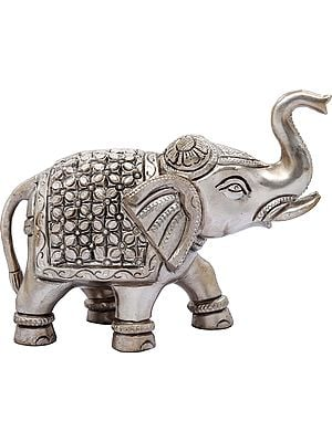 Elephant with Upraised Trunk (Auspicious Accroding to Vastu)