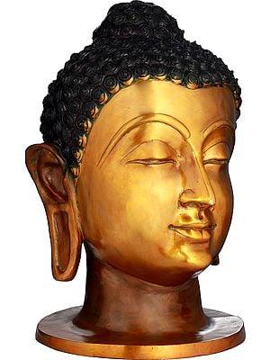 Large Size Buddha Head