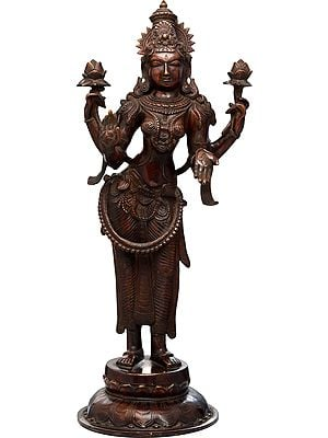 Goddess Lakshmi as Padmavati