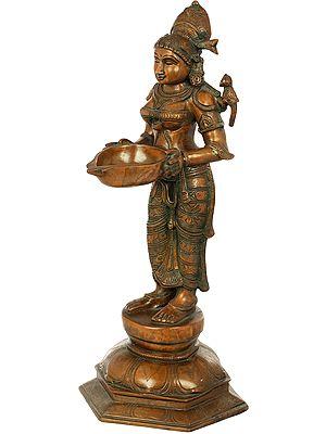 Deepalakshmi with Parrot on Her Shoulder