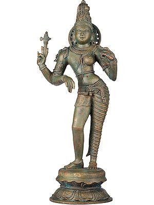 Deified Harmony, Ardharishvara