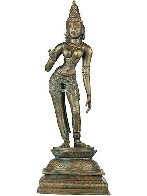 Standing Devi Parvati