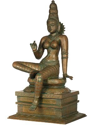Haloed Parvati Seated On An Exquisite Pedestal, A Flower In Her Hand