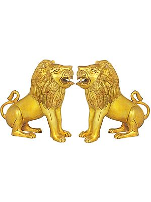 Pair of Lions