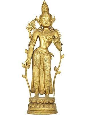 Padmapani Avalokiteshvara (Tibetan Buddhist Deity)