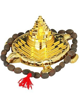 Shri Yantra on Tortoise For Vastu