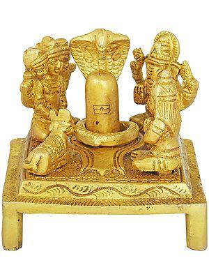 The Worship of Shiva Linga