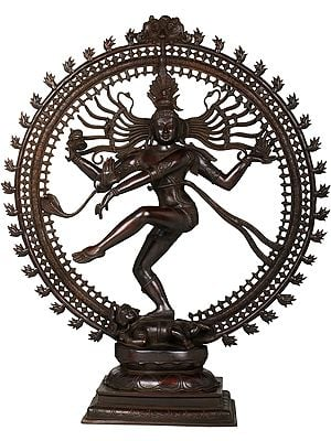 The Unmistakable Silhouette Of The Nataraja