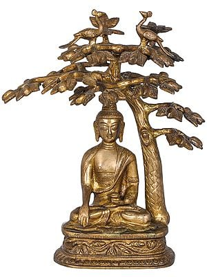 Lord Buddha Attaining Spiritual Enlightenment Under The Bodhi Tree - Tibetan Buddhist