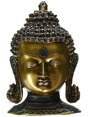 Buddha Head with Stones