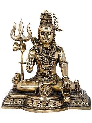 Blessing Shiva With Shiva Linga