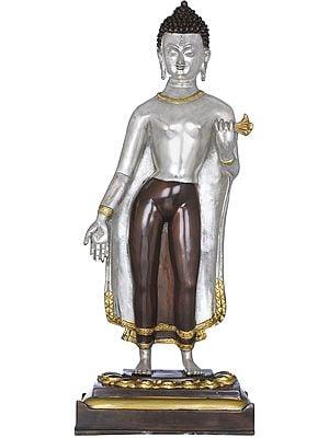 Standing Buddha - Tibetan Buddhist