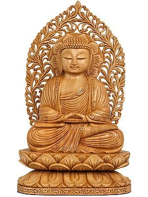 The Serenity Of Dhyani Buddha