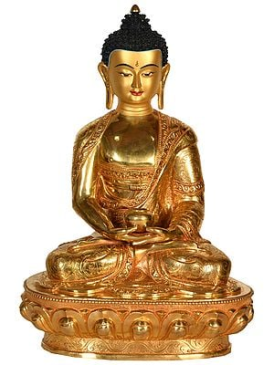 Nepalese Superfine Lord Buddha Wearing a Finely Carved Robe