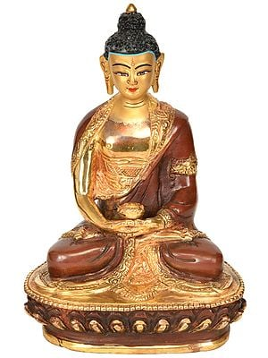 Tibetan Buddhist Lord Buddha (Made in Nepal)