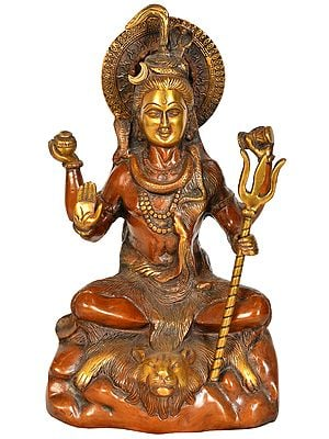 Blessing Lord Shiva Holding a Trident (Trishul)