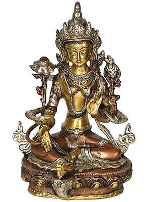 Green Tara - Tibetan Buddhist Deity