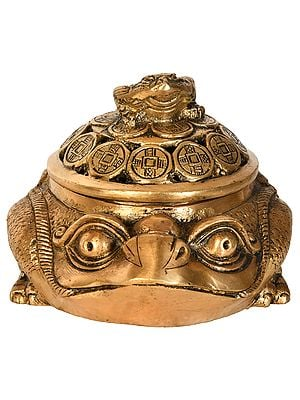 Feng Shui Frog Incense Burner