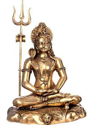 Large Size Meditating Shiva
