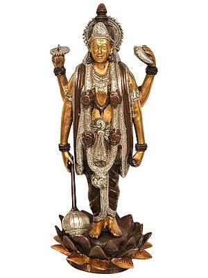 Lord Vishnu Standing on Lotus