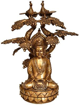 Meditating Buddha Under The Boddhi Tree (Tibetan Buddhist)