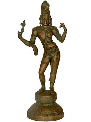 Ardharishvara, The Sammelana Of Purusha Va Prakrti