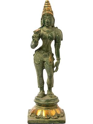 Standing Parvati Holding a Lotus