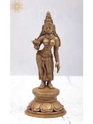 "5"" Small Standing Uma (Goddess Parvati) | Handmade | Panchaloha Bronze"