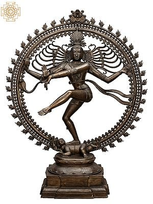 "62"" Super Large Nataraja | Handmade | Madhuchista Vidhana (Lost-Wax) | Panchaloha Bronze from Swamimalai"