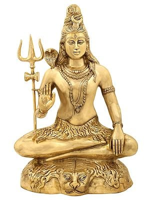 Bhava Shiva (A Particularly Beneficent Aspect)