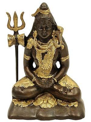 Mahayogi Shiva in Samadhi