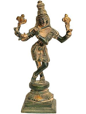 Cosmic Form of Lord Krishna