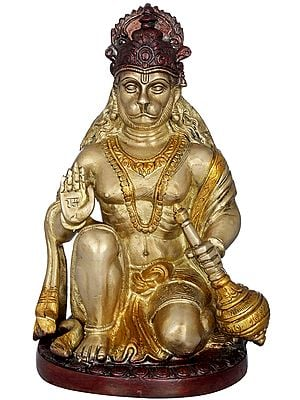 Blessing Lord Hanuman