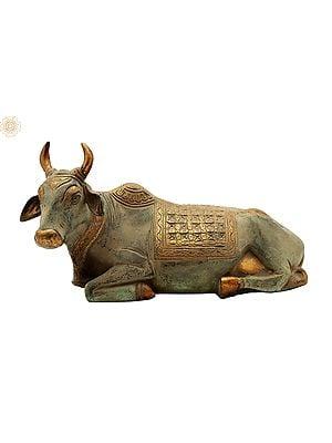Shiva's Nandi