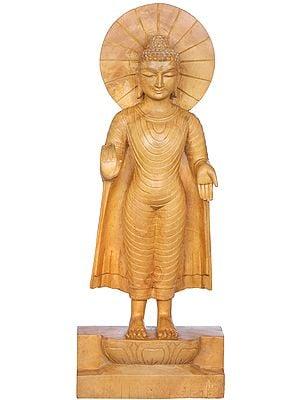 Standing Blessing Buddha -Tibetan Buddhist