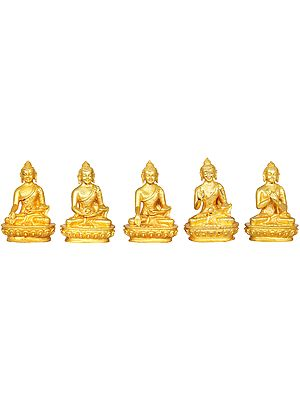 Set of Five Small Dhyani Buddhas