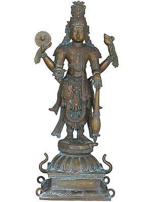 The All-Encompassing Lord Vishnu, The Deity With Skin Like Dusk
