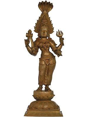 Mariamman (South Indian Goddess Durga)